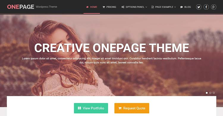 OnePage Portfolio WordPress Theme