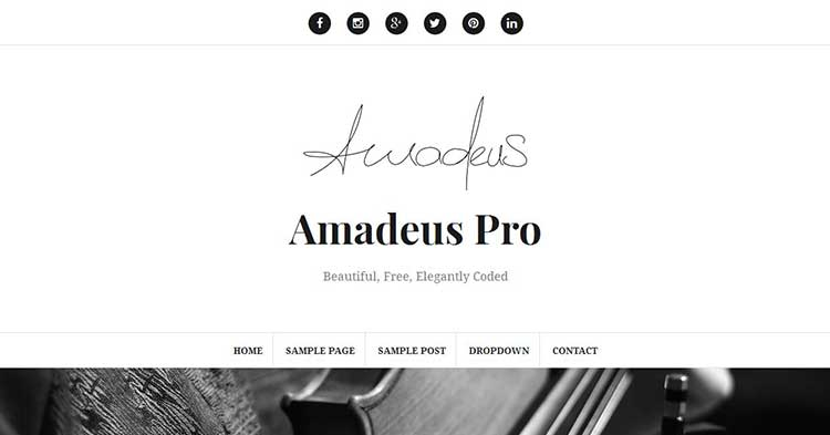 Amadeus Pro Blogging WP Theme