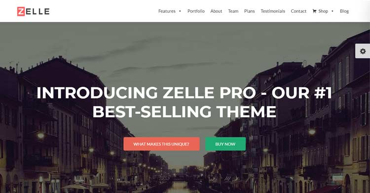 Zelle Pro Business WordPress Theme