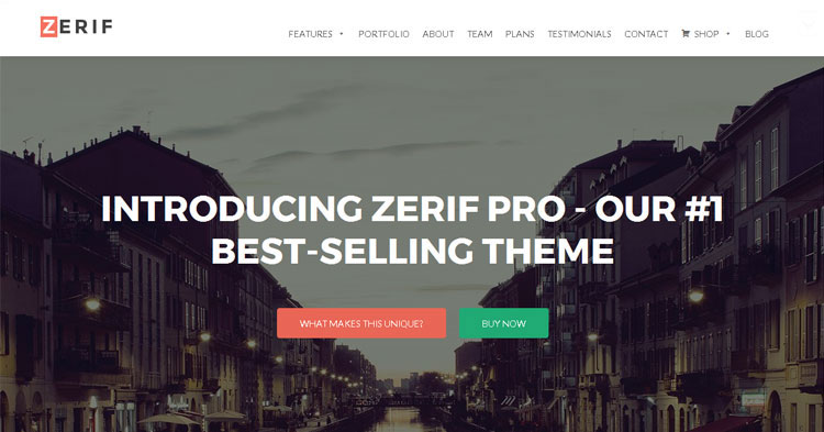 Download Zerif Pro Business WordPress Theme