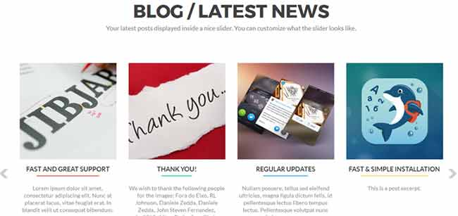 Zelle Pro - Blog Posts Section