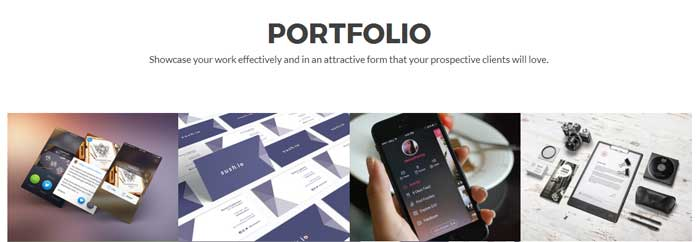 Zelle Pro - Portfolio Section