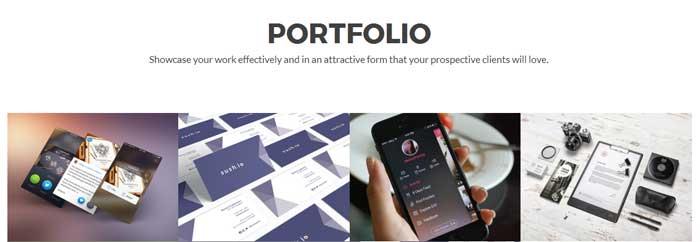 Zelle Pro - Portfolio Section