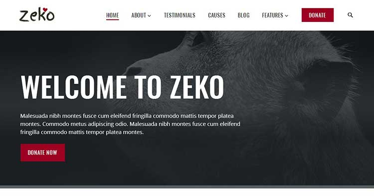 Download Zeko Non Profit Charity WP Theme