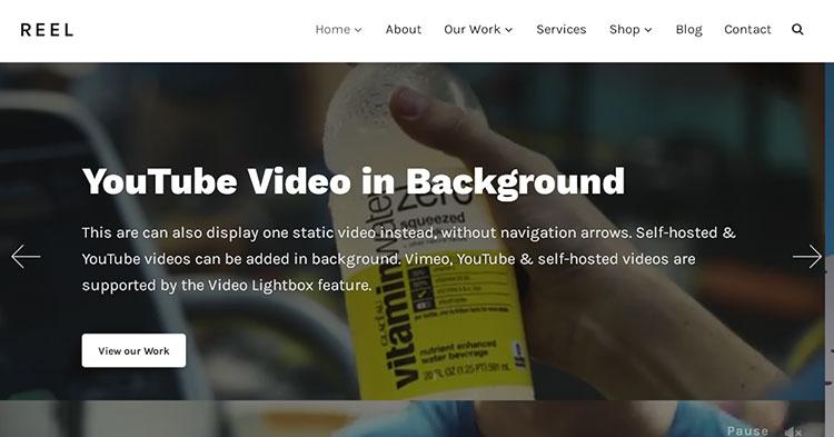 Reel Film Video Professionals WP Theme
