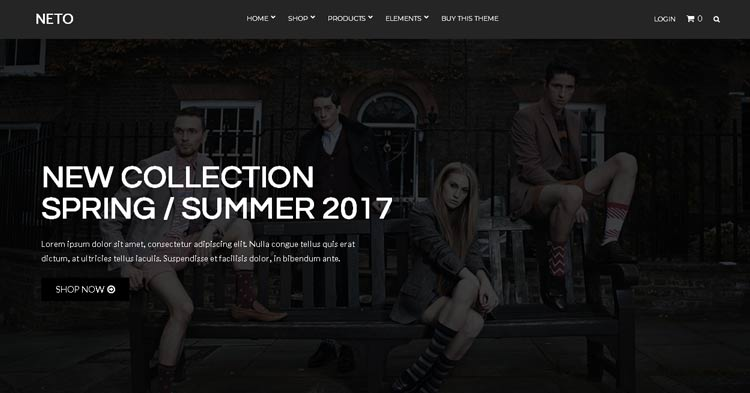 Neto WooCommerce WordPress Theme