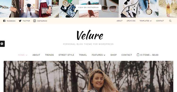 Download Velure Fashion Magazine WordPress Theme