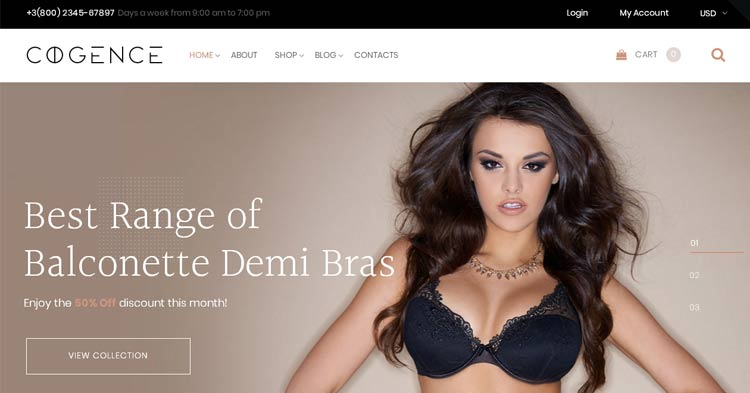 Download Cogence Lingerie WooCommerce Theme