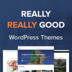 WPZoom WordPress Themes