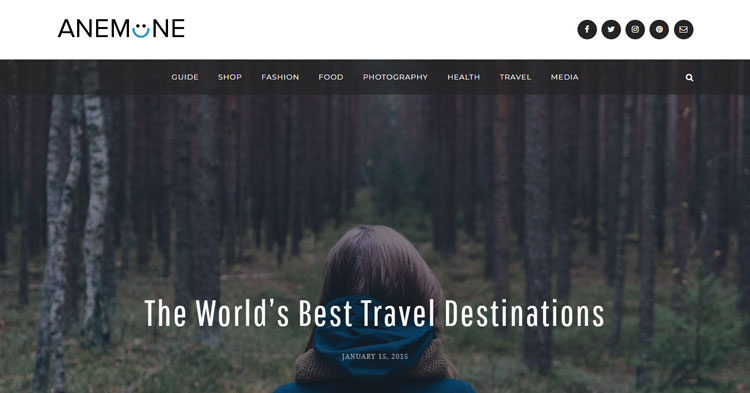 Download Anemone Blog Magazine WordPress Theme