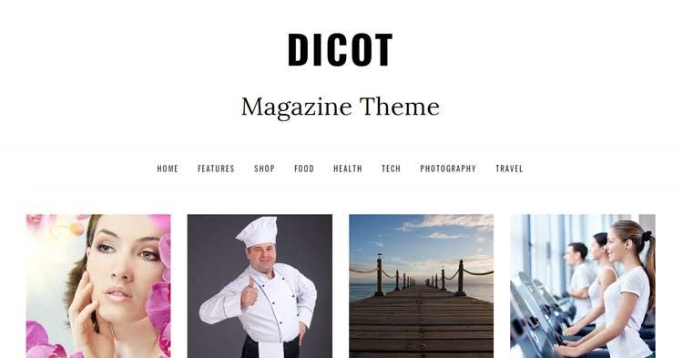 Dicot Blog Magazine WordPress Theme