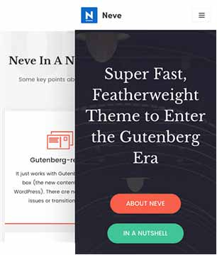 Neve Pro - responsive mobile ready theme