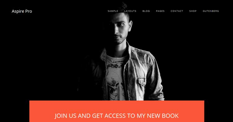 Download Aspire Pro WordPress Theme
