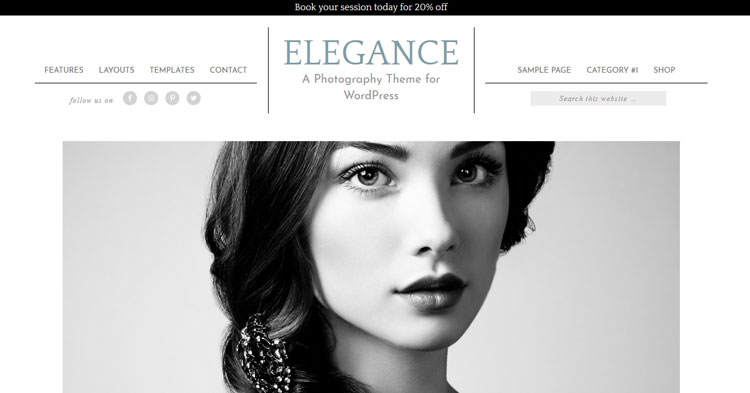 Download Elegance Pro WordPress Theme