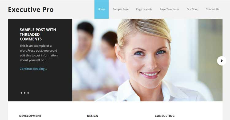 Download Executive Pro WordPress Theme