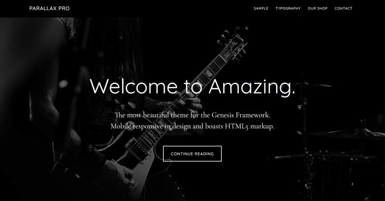 Download Parallax Pro WordPress Theme