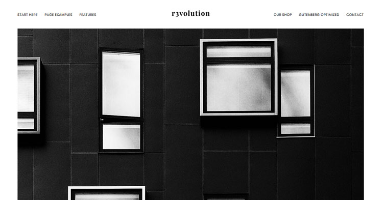 Revolution Pro WordPress Theme