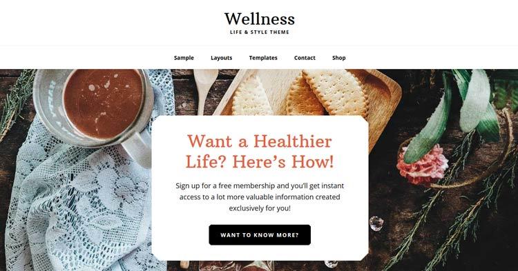 Download Wellness Pro Health WordPress Theme